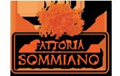 Fattoria sommiano - Vendita di vino in Toscana